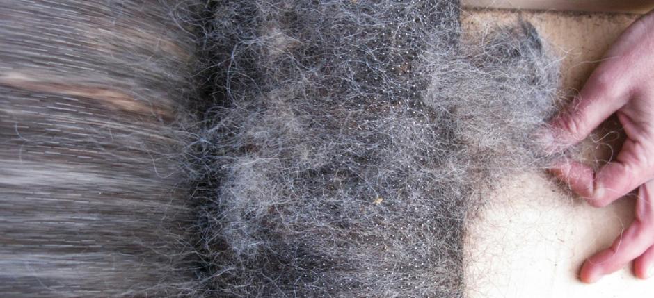 Ο κύκλος τού μαλλιού στην ύφανση με αργαλειό και felt